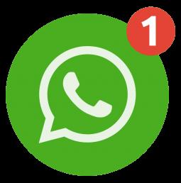 Daily MCQs on WhatsApp
